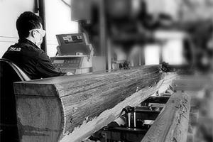 宇力木业原木锯切机