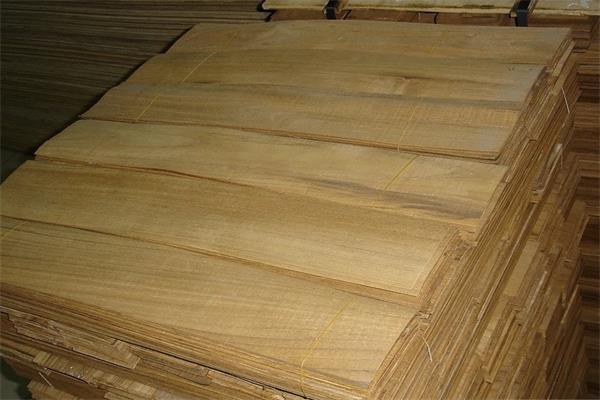 缅甸柚木木皮